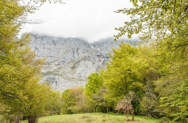 Valle del Líebana